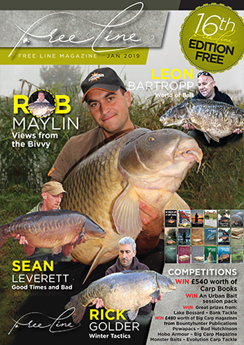 Freeline January 2019 cover image