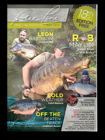 Freeline March 2019 cover image