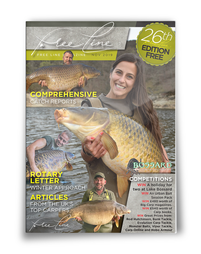 Freeline November 2019 cover image