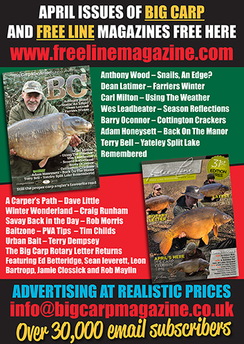 Freeline April 2020 cover image