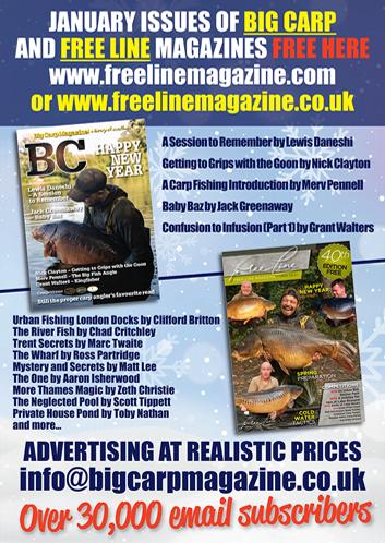 Freeline January 2021 cover image