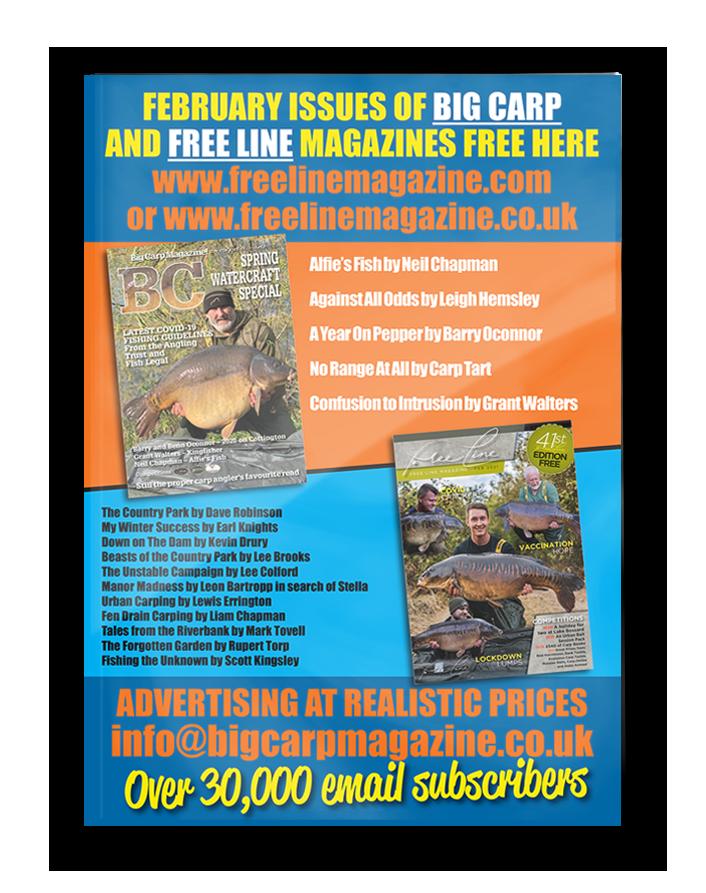 Freeline February 2021 cover image