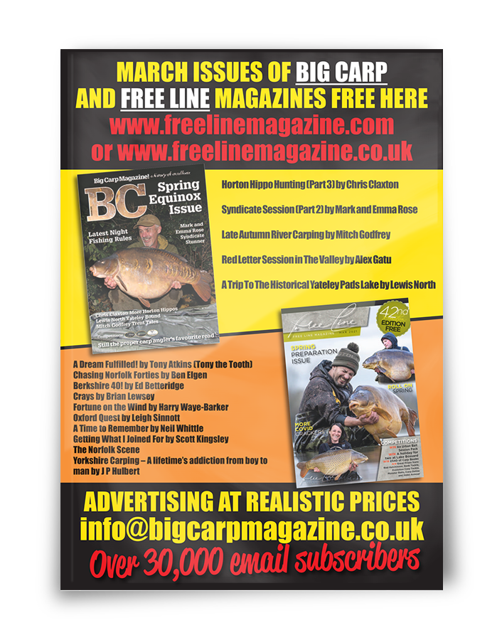 Freeline March 2021 cover image