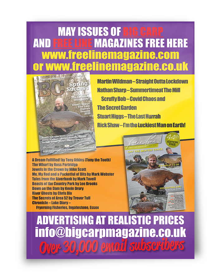 Freeline May 2021 cover image