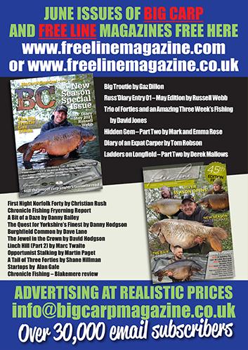 Freeline June 2021 cover image