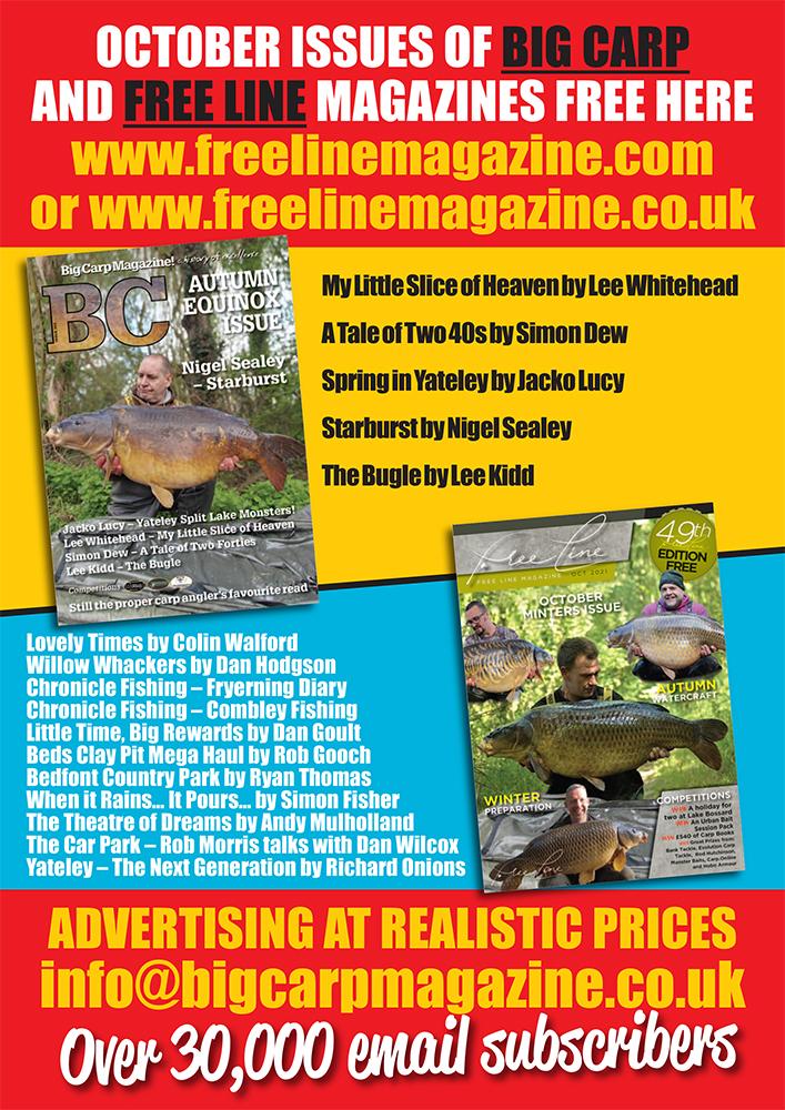 Freeline October 2021 cover image